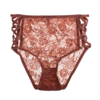 Bella High Waist Brief